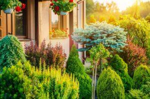 Lawn Care Maintenance For Mere Mortals Landscaper Dallas